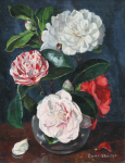 Whicker, Gwendoline J. (1900-1966): Camellias, signed, oil on canvas board, 24.2 x 18.5 cms. Presented by Mrs Esme Beecroft.
