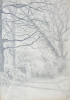 Martin, William A. (1899-1988): Arched tree with path and gate, pencil, 18.1 x 24.9 cms. Presented by Moss, Ruth. Bequest.