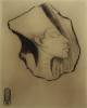 Williams, Marjorie (nee Murray 1880-1961): Egyptian Head Aknaton Amenothis IV (in the Louvre), signed and dated 1924, etching, 25.5 x 18 cms. Presented by Mariella Fischer-William MD.