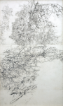 Newton, Kenneth (1933-1984): Work drawing for Nailbourne landscape, pencil on paper, 85 x 50 cms.