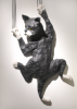 Cox, Philip (born 1945): Slipping cat, papier mache, 66 cms.