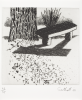 Southall, Andrew: From Black and White of Brick and Bark, printer: Stoneman, Hugh (1947-2005), publisher: The Print Centre, signed and dated 1991, etching (number 23 of an edition of 35), 45.3 x 38 cms. The Art Fund Hugh Stoneman Archive.