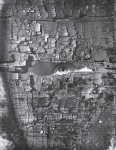 Chipman, Ian (1916-2005): Looking, about 1961, photograph, 37.5 x 29.5 cms.