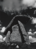 Mills, Tony: Trethevy Quoit, signed and dated 2010, photograph, 45.5 x 34.8 cms.