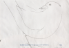 Exworth, Ray (1930-2015): Bird, pencil on an envelope, 16.5 x 24 cms. Presented by the artist.