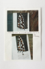 Lanyon, Andrew (born 1947): Photo of iron: Man Ray's Gift at 10 in the morning and 4 in the afternoon, photograph and paper, 25 x 17.5 cms. New Expressions 2 supported by MLA Renaissance South West and the National Lottery through Grants for the Arts. Commission.
