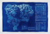 Chaney, Paul : Lizard Exit Plan Blueprint #2 Product, cyanotype blueprint, 69.5 x 105 cms.