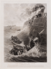 Hemy, Thomas Madawaska Napier (1852-1937): And every soul was saved, mid Atlantic. 6th April 1889, engraving, 69.6 x 50.8 cms. Presented by Powell, Barbara.