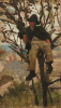 Tuke, Henry Scott, RA RWS (1858-1929): Boy in a Tree (Study for 'Un Jour de Paresse', oil on panel (broken), 21.6 x 12.6 cms. RCPS Tuke Collection. Loan.