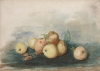 Tuke, Henry Scott, RA RWS (1858-1929): Fruit from Nature, November 1877, signed and dated 1877, inscribed Fruit from Nature subject for November 1877, watercolour, 17.8 x 25.5 cms. RCPS Tuke Collection. Loan.