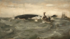 Tuke, Henry Scott, RA RWS (1858-1929): Whale Blowing, oil on canvas laid down on board, 25.4 x 45.7 cms. RCPS Tuke Collection. Loan.