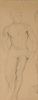 Berlin, Sven (1911-1999): Male nude, pencil on paper, 51 x 20 cms. Presented by Thomas, Robin. Bequest.
